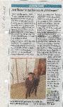 2013 Kein Thema - ST 16.11.2013